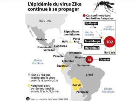 épidémie virus zika