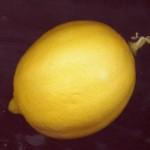 rinçage à l'eau citronnée