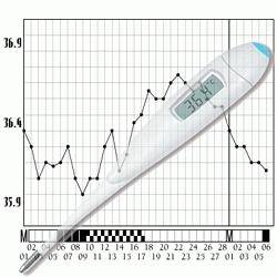 courbe de température pour avoir un bébé